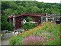 SJ6703 : The Iron Bridge (Ironbridge) by Fabian Musto