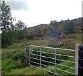 H9722 : Scrubland on Aughanduff Lower Mountain by Eric Jones