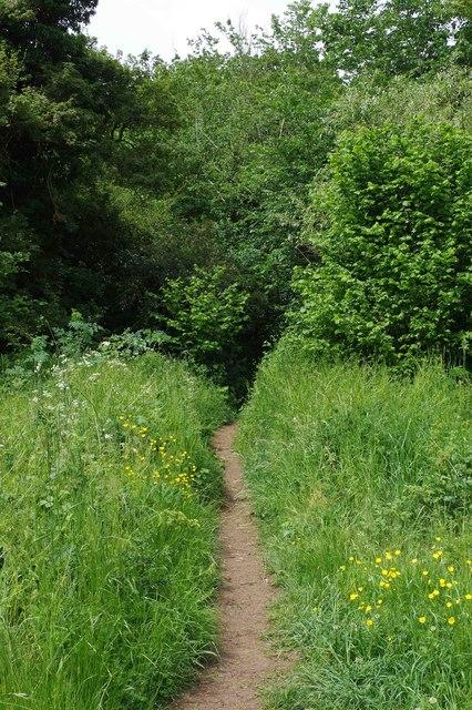 Public footpath entering The Plantation, near Bampton, Oxon