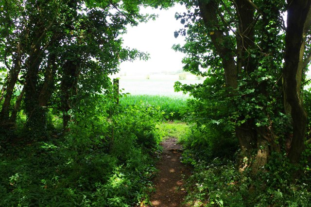 Public footpath entering a field from The Plantation, near Bampton, Oxon