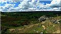SE6297 : A hawthorn in Bransdale by Mick Garratt