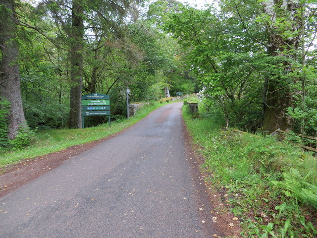 Minor road that leads towards Ariundle Oakwood National Nature Reserve