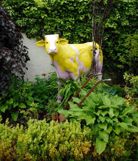 Cow amongst the vegetation