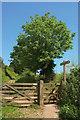 SX8854 : Path junction, Higher Greenway by Derek Harper