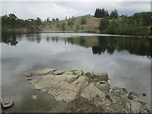 SD3299 : Tarn Hows by Peter S