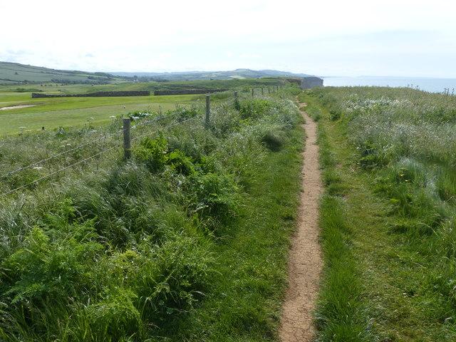 Coast Path on East Cliff