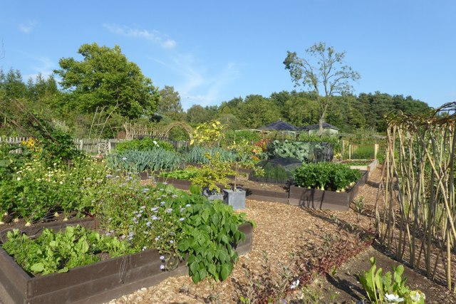 Kitchen garden in Harlow Carr
