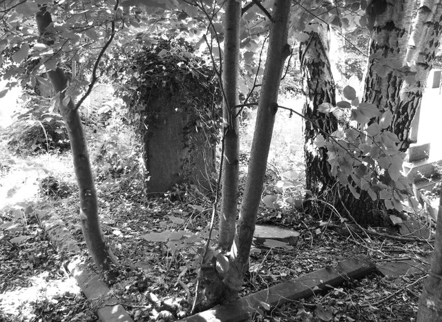 The overgrown grave of Mary Colman