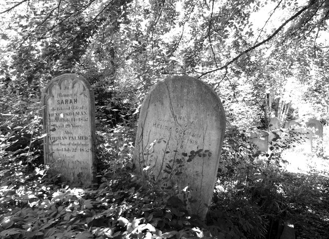 Graves of the Colman Family