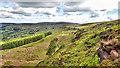 SE5299 : Rank Crag by Mick Garratt