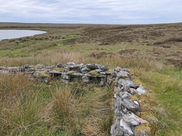 Shieling hut, Àirighean Loch Foisneabhat, Isle of Lewis
