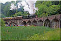 SJ6604 : Coalbrookdale Viaduct - steam special by Chris Allen