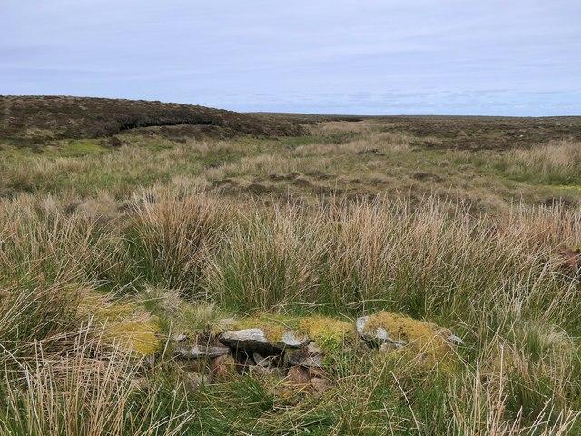 Shieling hut, Àirighean Molagro, Isle of Lewis