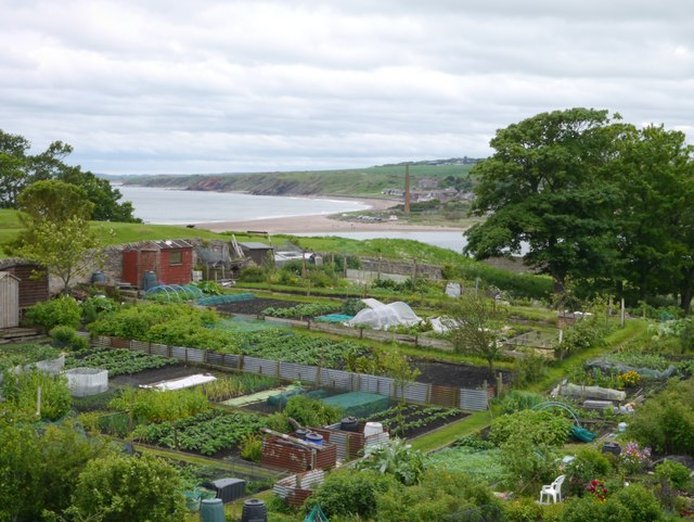 Lions House Allotments Berwick-Upon-Tweed