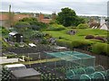 NU0052 : Lions House Allotments Berwick-Upon-Tweed by Jennifer Petrie