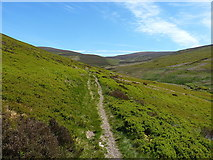 SJ0634 : Singletrack bridleway up the Clochnant valley by Richard Law