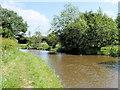SJ3933 : Shropshire Union (Llangollen) Canal approaching Ellesmere by David Dixon