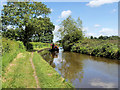 SJ3934 : Llangollen (Shropshire Union) Canal nearing Ellesmere by David Dixon