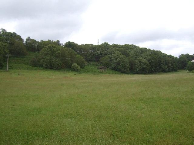 Grassland towards Blazebank