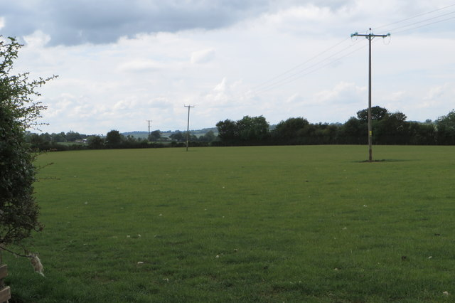 Powerlines over the pasture