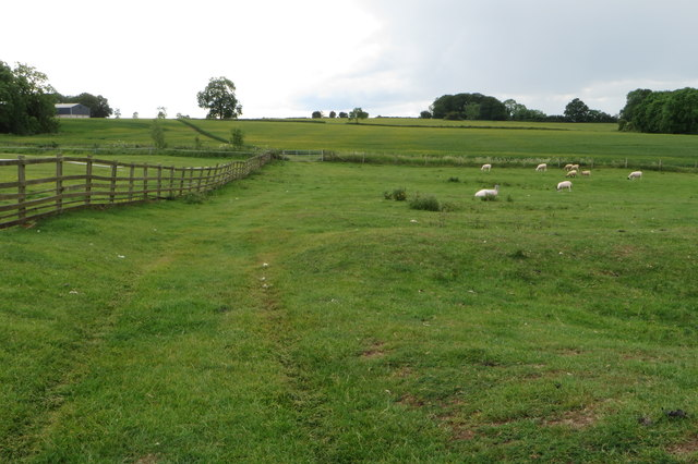Footpath towards Maidford