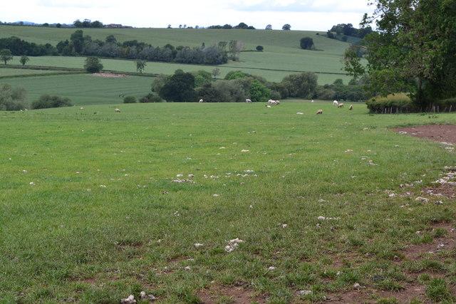 Field beside Bugbrooke Road