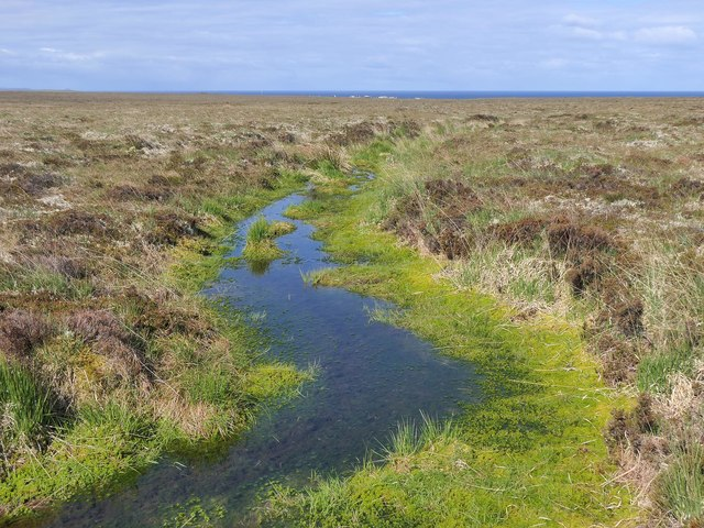 Bog on moorland to the south of Tom a' Mhile, Isle of Lewis