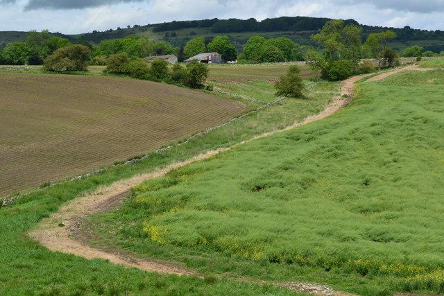 Farmland beside the Monsal Trail