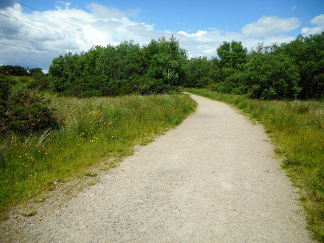 Path in Dams to Darnley Country Park