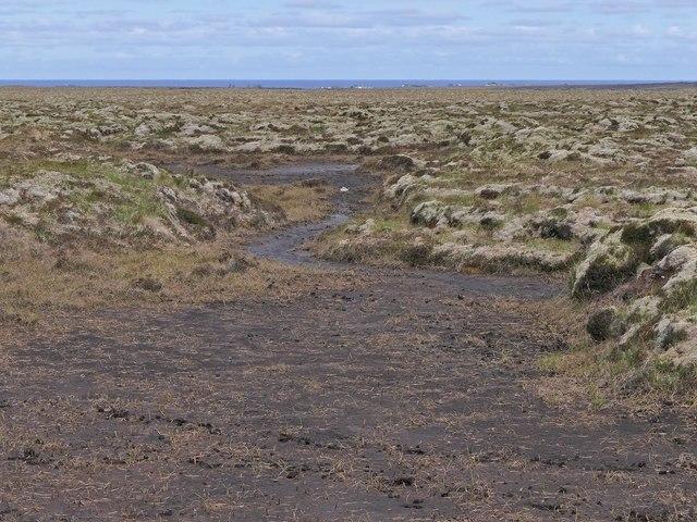 Deer tracks in exposed peat on moorland to the west of Airighean Molagro, Isle of Lewis