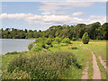 SJ4332 : Path at the South West Corner of Cole Mere by David Dixon