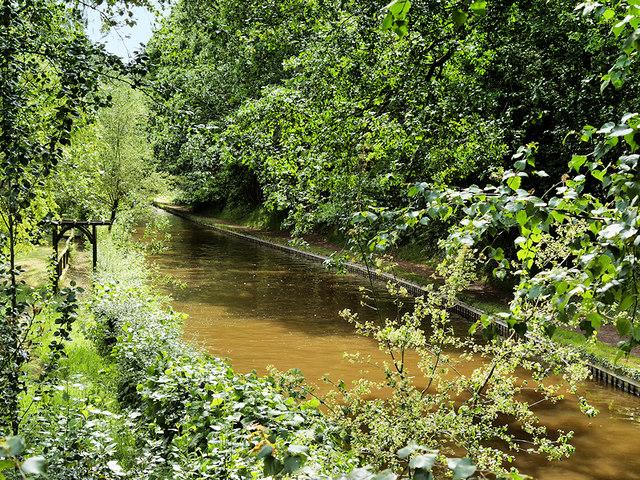 Shropshire Union (Llangollen) Canal, Colemere