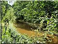 SJ4233 : Shropshire Union (Llangollen) Canal, Colemere by David Dixon