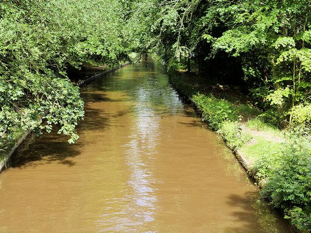 Llangollen Canal at Colemere