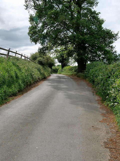 Minor Road to the west of Colemere