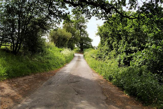 Road near Colemere Farm