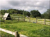 SJ4821 : Harmer Hill, The Meadows by David Dixon