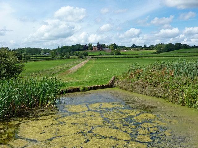 Farmland and lock sidepond near Knowle, Solihull