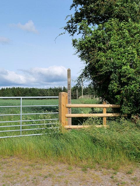 Footpath towards Lower Longwood
