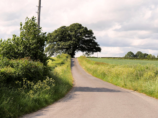 Minor Road near Dryton
