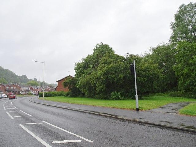 Rainy Northway