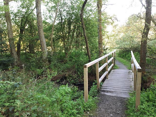 A footbridge in Golden Acre Park