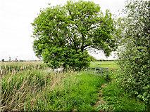 SE7844 : Kissing gate on public footpath by Trevor Littlewood