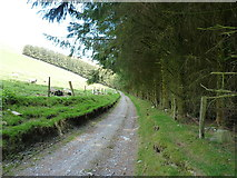 SJ0932 : Bridleway and track in the valley by Richard Law