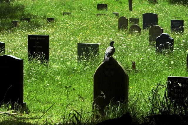 Grave Yard near St Mary's College - Durham