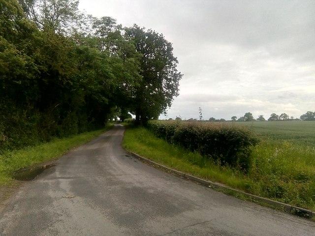 Lane at Kelsale Covert