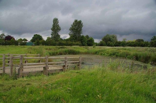 Pond & Menacing Sky