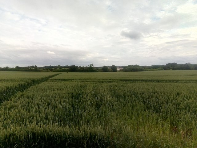 View southwards off Clayhill Road