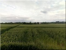 TM3964 : View southwards off Clayhill Road by Christopher Hilton