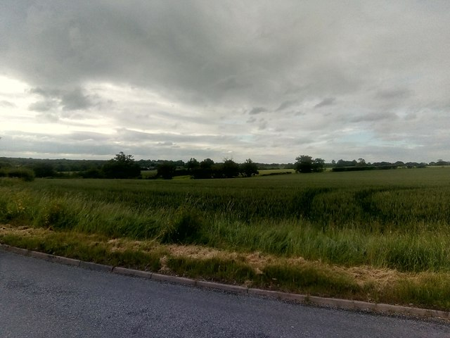 View northwards off Clayhill Road